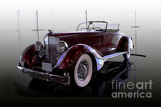 Packard Convertable by Curt Johnson