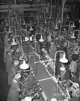 California Views Mr Pat Hathaway Archives - Packing tables at Del Monte Packing  California Packing Corporation 1949