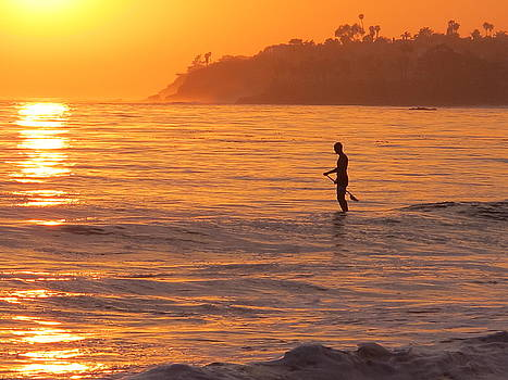 Paddle Board at Sunset by Nelda Mays