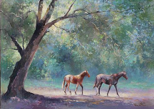 Paddock by Anne Lattimore