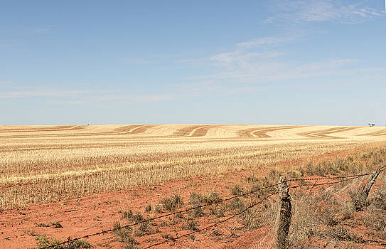 Paddock of Wheat Stubble by Vicki Vale