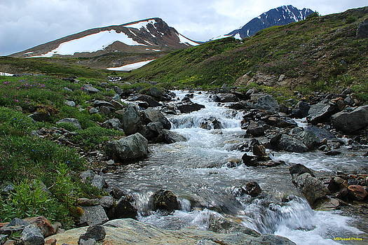 Marv Russell - Paddy Peak Mountain Stream