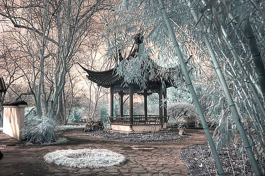 Pagoda bamboo chinese garden infrared by Jane Linders
