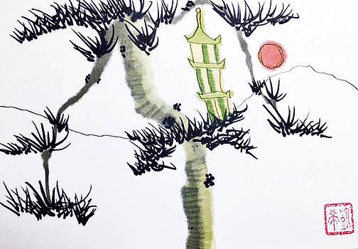 Casey Shannon - Pagoda Tree