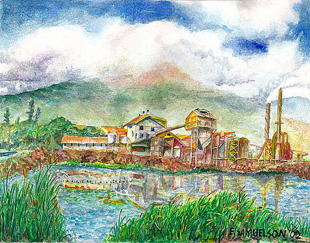 Paia Mill 1 by Eric Samuelson
