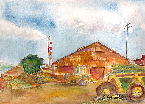 Paia Mill 3 by Eric Samuelson
