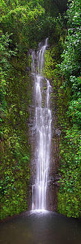 Paihi Falls by Mikes Nature