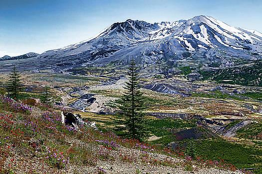 Paint Brush Mt St Helens by Athena Mckinzie