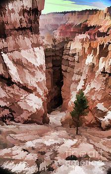Chuck Kuhn - Paint Dynamic Bryce Canyon