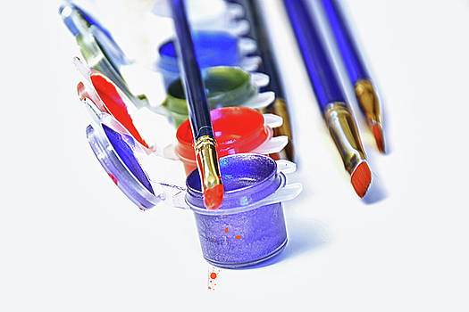 Paint Set by Pat Cook