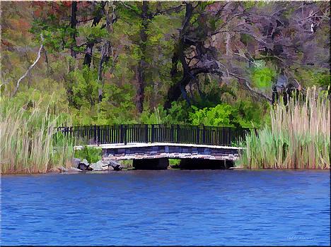 Painted Bridge by Mikki Cucuzzo