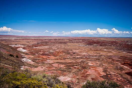 Painted Desert #10 by Robert J Caputo