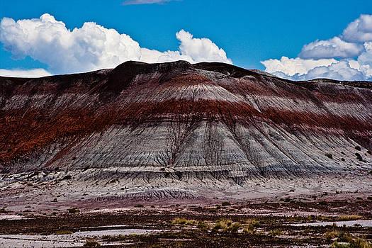 Painted Desert #5 by Robert J Caputo