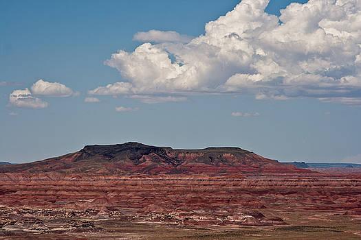 Painted Desert #8 by Robert J Caputo