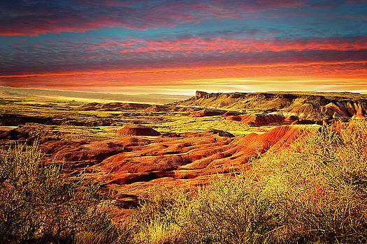 Painted Desert Painted Sky by Beverly Hanson