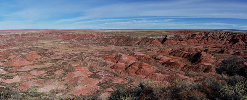 Painted Desert Panorama by Gej Jones