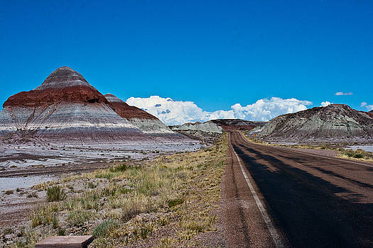 Painted Desert Road #3 by Robert J Caputo