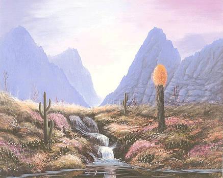 Painted Desert by Susan Elizabeth Wolding