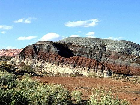 Painted Desert by Will Borden