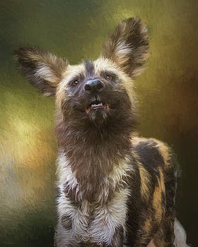 Painted Dog Portrait by Nicole Wilde