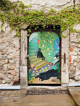 Painted Door by Rae Tucker