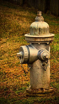 Dave Bosse - Painted Fireplug