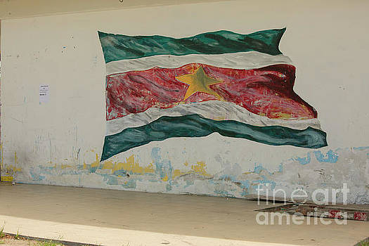 Painted flag of Suriname by Patricia Hofmeester