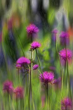 Painted Flowers II by John Rivera