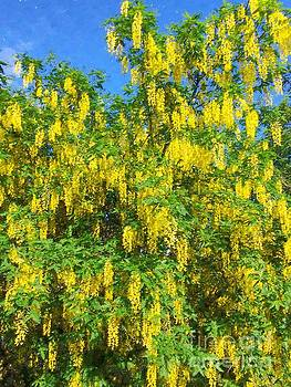 Painted Golden Chains Ornamental Tree by Barbara Griffin