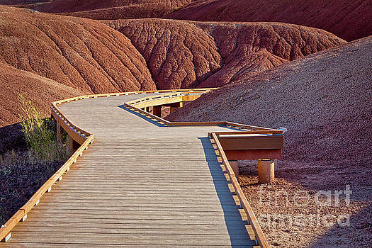Painted Hills Boardwalk by Jerry Fornarotto