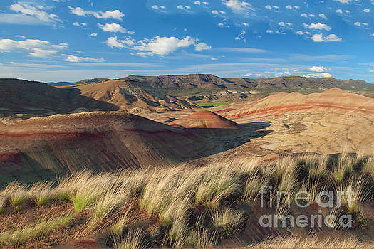 Painted Hills by Moore Northwest Images