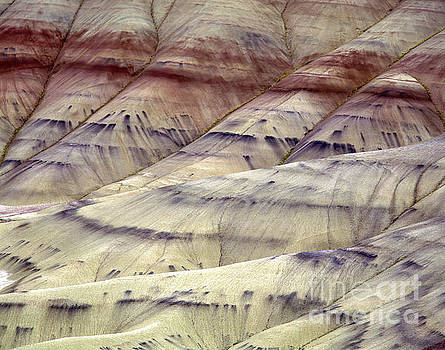 Painted Hills  by Tracy Knauer