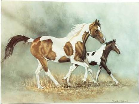 Painted Horses by Syndi Michael
