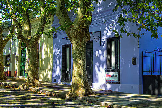 Venetia Featherstone-Witty - Painted Houses in Colonia del Sacramento