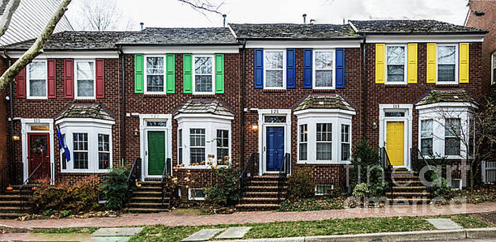 Painted Ladies of the Kentlands by Thomas Marchessault