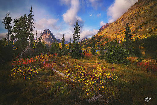 Painted Morning by Peter Coskun