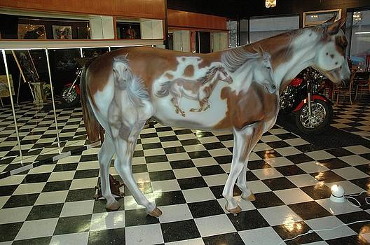 Painted Pony by Wayne Pruse