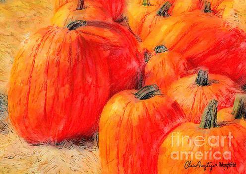Painted Pumpkins by Chris Armytage