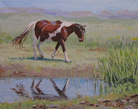 Painted Reflection by Anda Kett