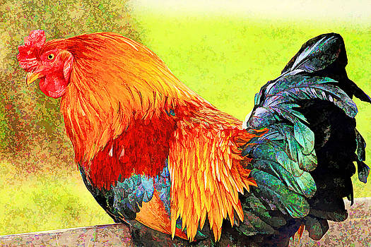 Painted rooster by Geraldine Scull