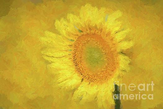 Painted Sunflower by Geraldine DeBoer
