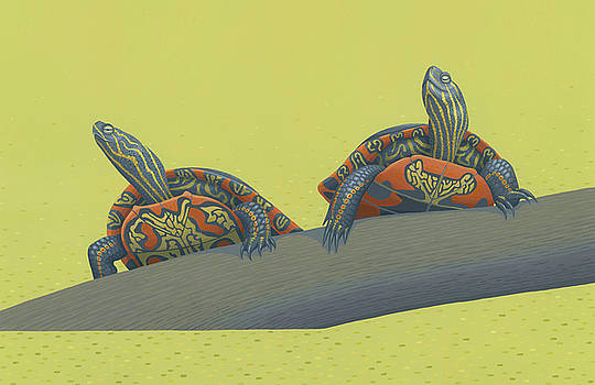 Painted Turtles by Nathan Marcy