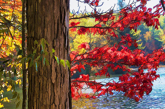 Randall Nyhof - Painterly Rendition of Red Leaves and Tree Trunk in Autumn