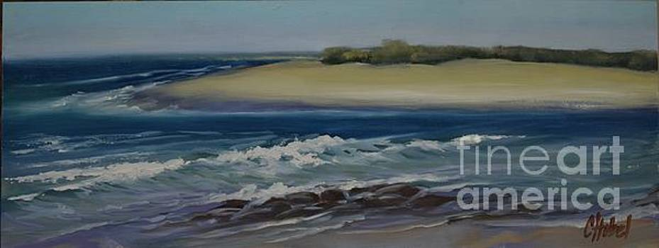 Painting Happy Valley Caloundra Qld Plein Air Painting by Chris Hobel