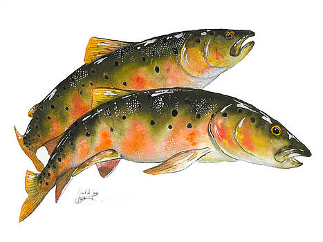 Pair Of Lenok Trout by Joel DeJong