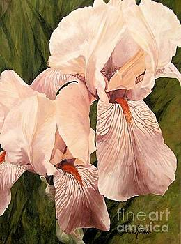 Pair of Peach Iris  by Laurie Rohner
