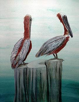 Pair of Pelicans by Joan Mansson