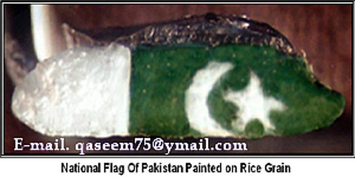 Pakistan's Flag Painted on Single Rice Grain by Qaseem Ur- Rahim