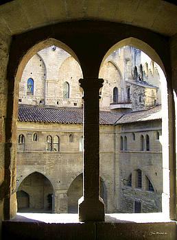 Joan  Minchak - Palais des Papes View
