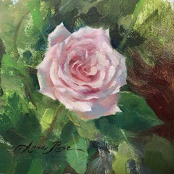 Pale Rose Study by Anna Rose Bain